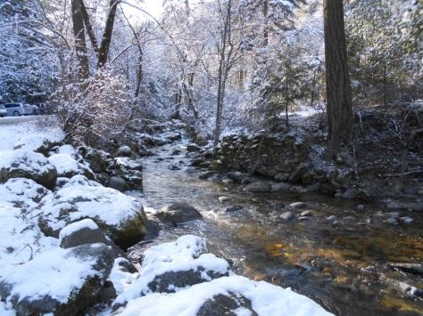 Ashland Creek -- the infamous sight of aquatic sampling! Photo by Erika Hansen.