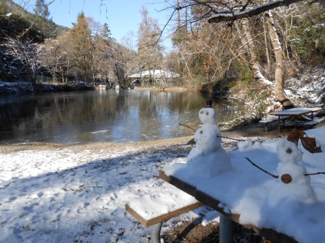 Mini snowmen keeping us company as we dunk our hands into frigidly cold water for beloved aquatic organisms. Photo by Erika Hansen.