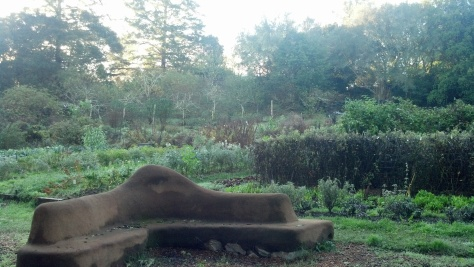 OAEC GARDEN AND COB BENCH (2)