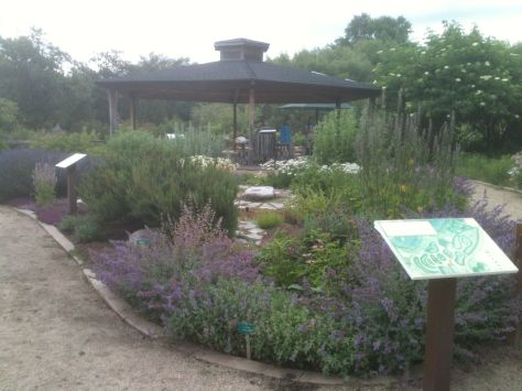 Herb garden at North Mountain Park Nature Center. Photo by Amy Post.
