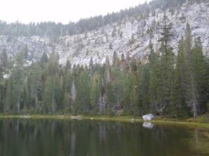 Conifers abound around Little Duck Lake. Photo by Sarah Burstein.
