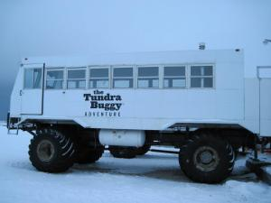 the Tundra Buggy