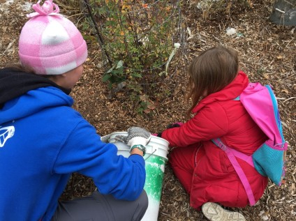 Protecting native plants - Ashland Pond