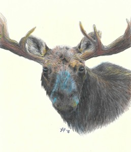 luaren moose